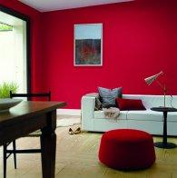 Salon, kolor roku 2012